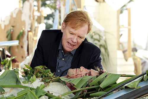 Photo David Caruso, Jonathan Togo