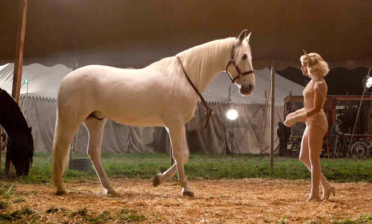 Circus horses water for elephants - photo#17