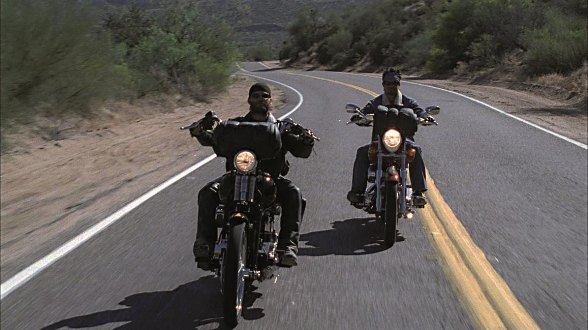 Born to Ride : Photo