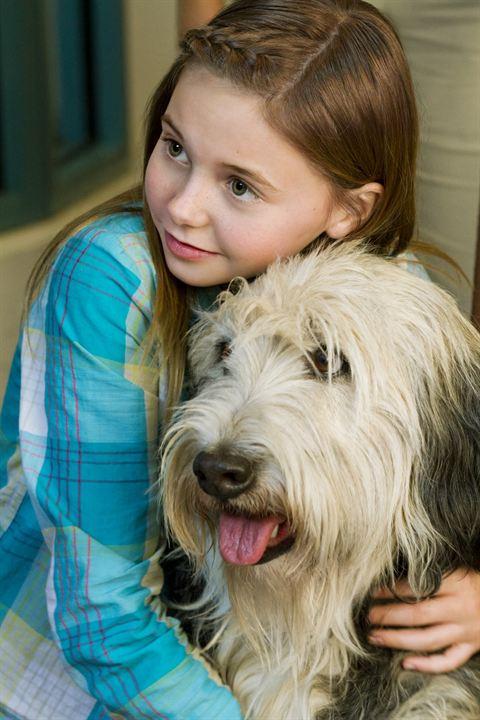 Un amour de chien : Photo Katie L. Hawkins