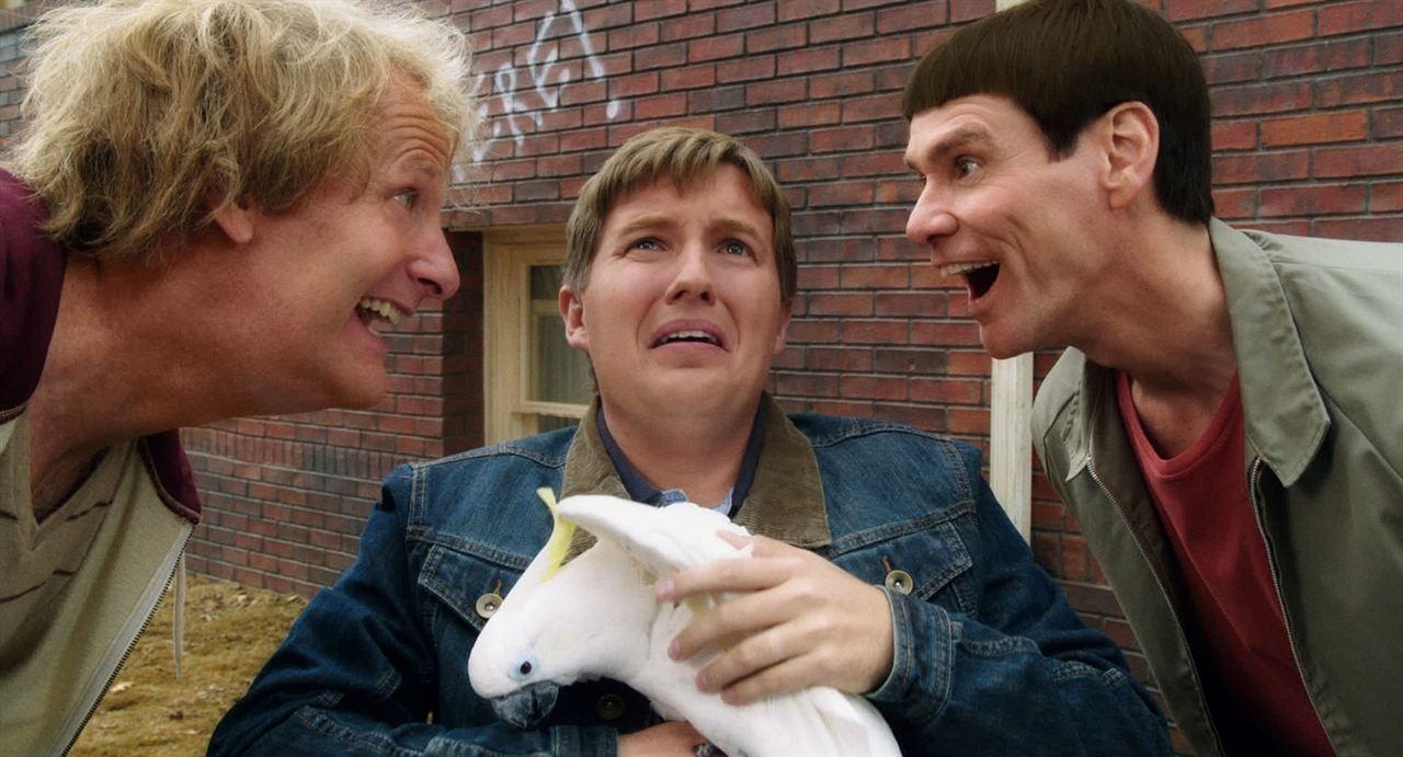 Dumb & Dumber De : Photo Brady Bluhm, Jeff Daniels, Jim Carrey