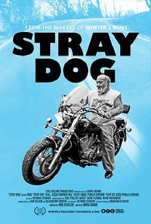 Stray Dog : Affiche