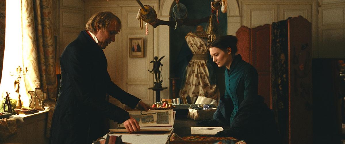 Madame Bovary : Photo Mia Wasikowska, Rhys Ifans