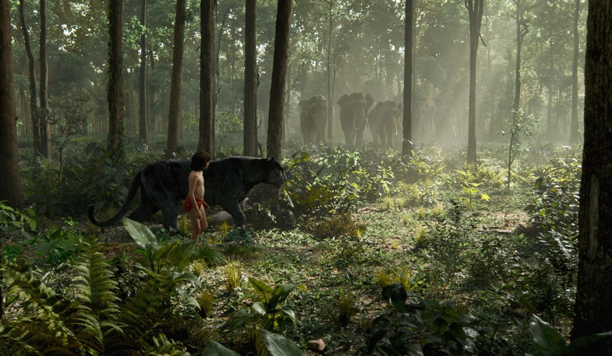Le Livre de la jungle : Photo Neel Sethi