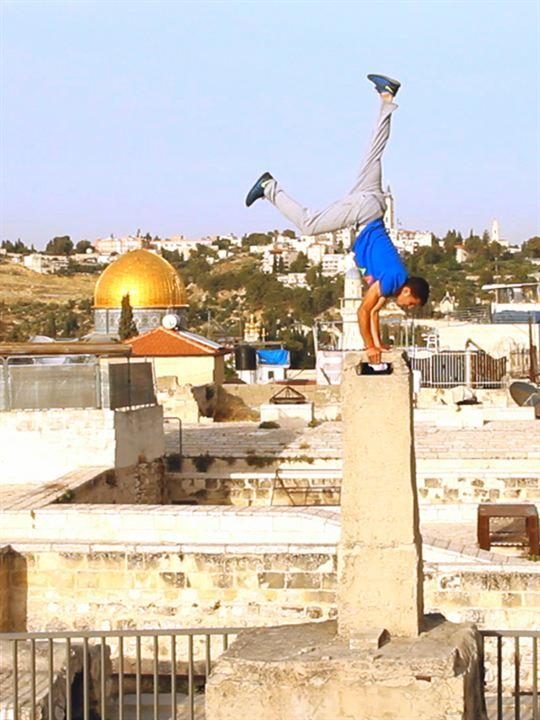 Derrière les fronts: résistances et résiliences en Palestine : Affiche
