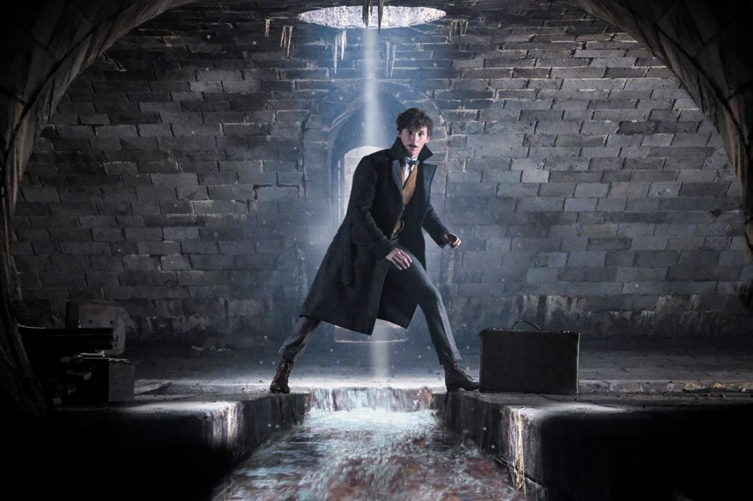 Les Animaux fantastiques : Les crimes de Grindelwald : Photo Eddie Redmayne