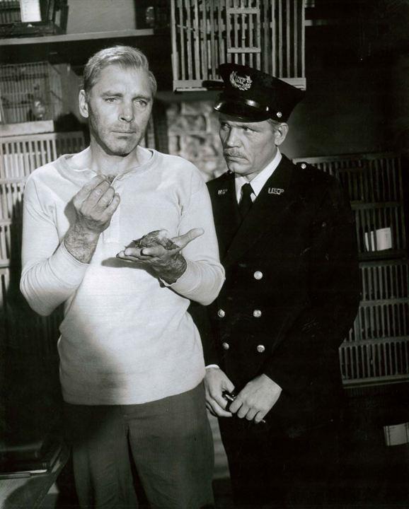 Le Prisonnier d'Alcatraz : Photo