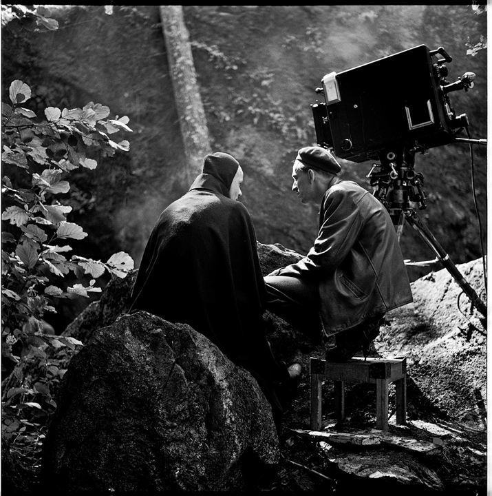 Bergman, une année dans une vie : Photo