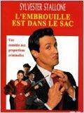 L'Embrouille est dans le sac (Oscar)