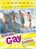 Another Gay Sequel : Gays gone wild !