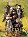 Siamese outlaw