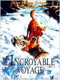 L'Incroyable Voyage