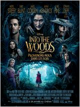 Into the Woods, Promenons-nous dans les bois streaming