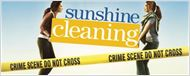 """Sunshine Cleaning"" décliné en série ?"