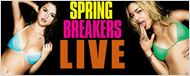 &quot;Spring Breakers&quot; : le tapis rouge en live !