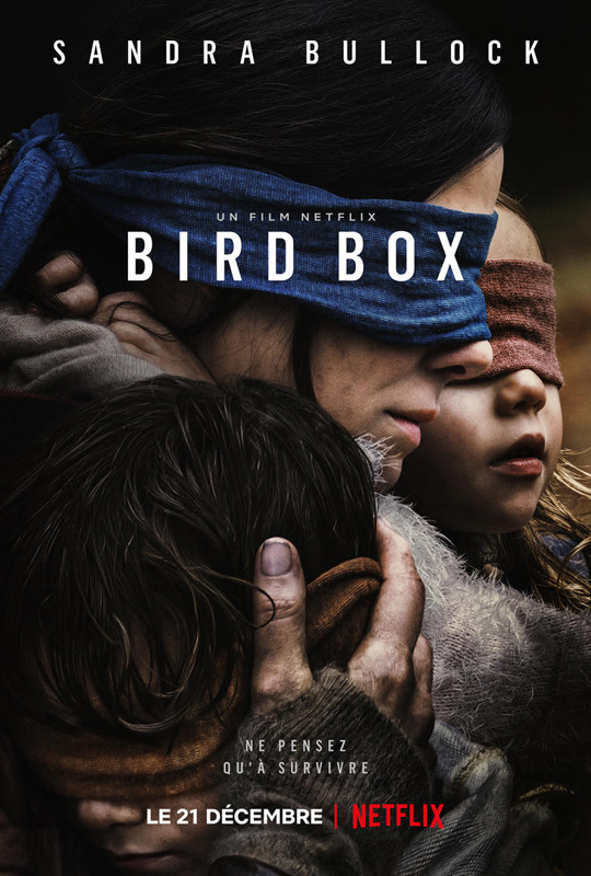 bird box affiche