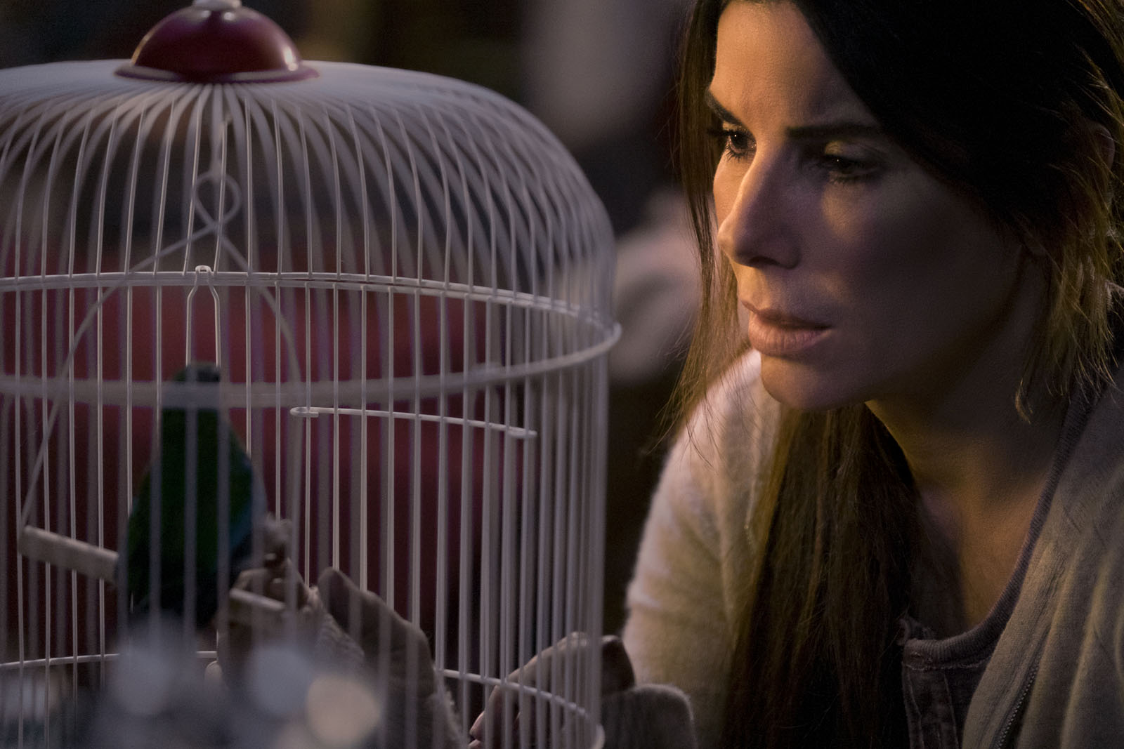 [Films] Bird Box 1230253