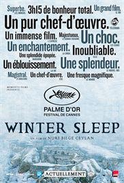 Winter Sleep streaming