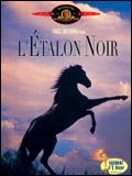 L'Etalon noir