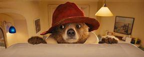 Extrait Paddington : le vrai nom du célèbre ours péruvien est...