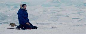 """César 2017 : """"La musique est un personnage à part entière"""", déclare Ibrahim Maalouf, césarisé pour Dans les forêts de Sibérie"""