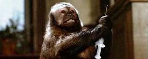 Journée Mondiale des animaux dans les laboratoires : 3 films autour du sujet