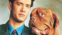 Turner & Hooch sur Disney+ : 3 choses à savoir sur le film avec Tom Hanks qui a inspiré la série