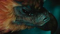 Quiz Harry Potter : à quels personnages appartiennent ces animaux de compagnie ?