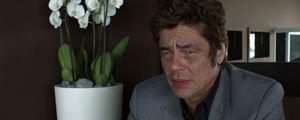 """A Perfect Day : Benicio del Toro """"aime jouer les perdants !"""""""