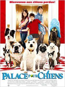 Palace pour chiens affiche