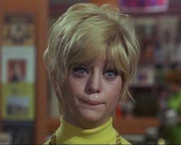 fleur de cactus - film 1969 - allociné