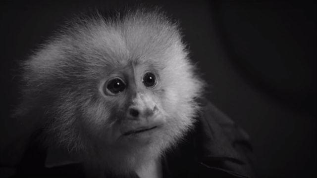 David Lynch dévoile un court métrage complètement fou — Netflix