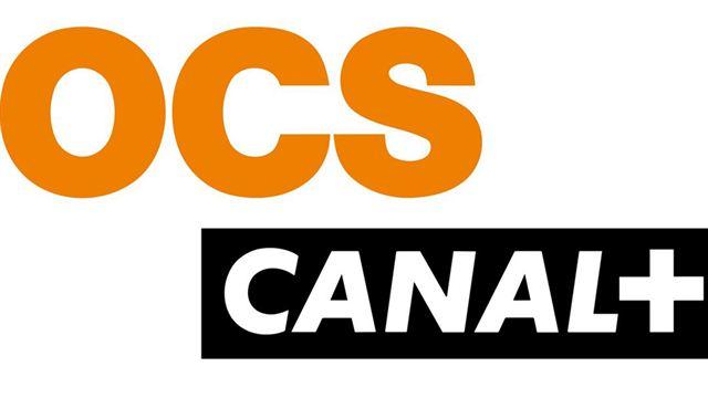 Le CSA demande à Canal+ de repasser en crypté — Confinement