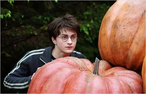Harry Potter et le Prisonnier d'Azkaban : Photo Alfonso Cuarón, Daniel Radcliffe