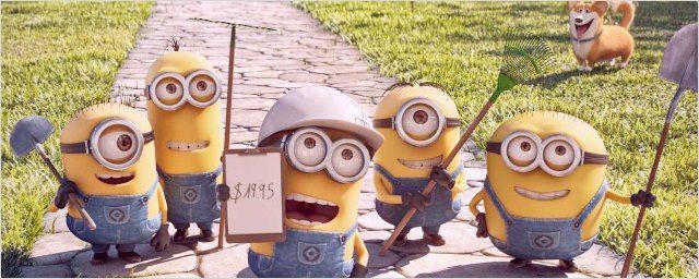 Les Minions de retour au cinéma dans un court-métrage avant la diffusion de Comme des bêtes en salles !