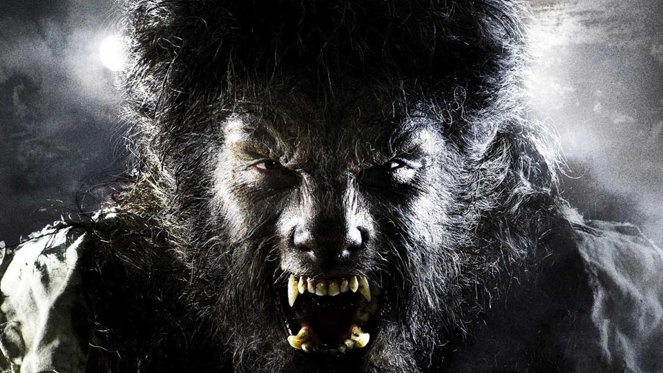 Extrêmement Top 5 N°406 - Les loups-garous - AlloCiné ZB39