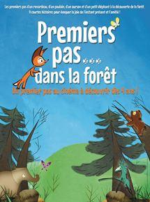 Premiers pas dans la forêt