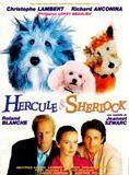 Bande-annonce Hercule et Sherlock