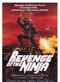 Bande-annonce Ultime Violence - Ninja 2