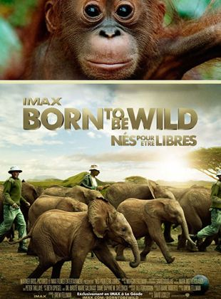 Bande-annonce Born to Be Wild
