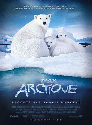 Bande-annonce Arctique