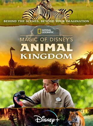 Au cœur de Disney's Animal Kingdom
