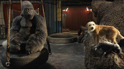 Le Seul et unique Ivan sur Disney + : comment a été créé le gorille ?