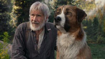 L'Appel de la forêt sur CANAL+ : savez-vous qu'un acteur a joué le chien ?