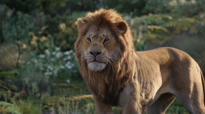 Photo du film Le Roi Lion en 3D