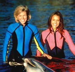 Affiche de la série The New Adventures of Flipper