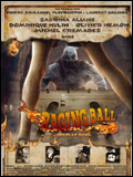 Télécharger Raging Ball TUREFRENCH Gratuit