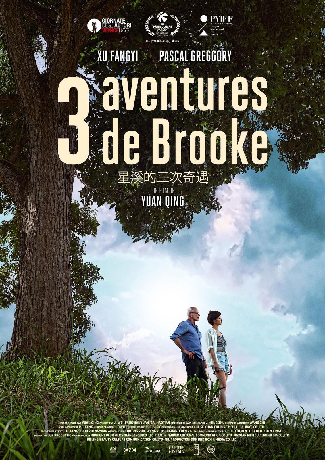 3 Aventures de Brooke - film 2018 - AlloCiné