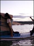 Affichette (film) - FILM - Ana, sonhos de peixe : 111364