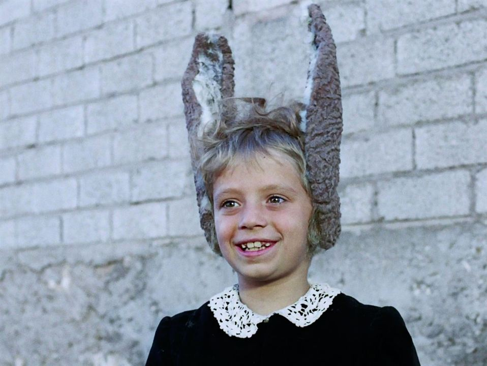 Les Aventures de Pinocchio : Photo Andrea Balestri